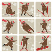 Set of Brown bear in winter sport.Humorous illustration — Stock Vector