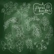 Flowers and plants set on chalkboard background — Stock Vector #44979447