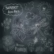 Summer Doodle set on chalkboard background — Stock Vector
