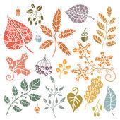 装飾的な紅葉 — ストック写真