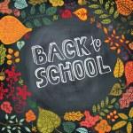 Back to school.Autumn leaves ,berries,paper on blackboard — Stock Photo