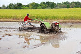 Farmer driving original tractor on rice filed — Stock Photo