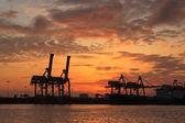 容器海上貿易港の読み込み — ストック写真