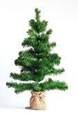 圣诞树上白色隔离 — 图库照片