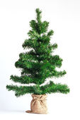 Vánoční strom izolované na bílém — Stock fotografie