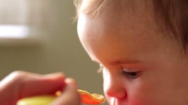 Feeding a small child, baby food, — Stock Video