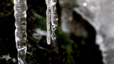 Icicle drips,icicle melts — Stockvideo