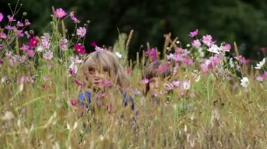Children play with wild flowers,children play in the mugs — Stock Video