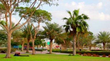 UAE.Dubai.Al Safa Park February 2014. — Stock Video