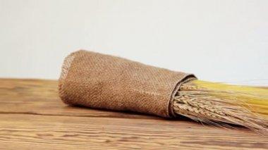 Italian spaghetti, Italian pasta ingredients — Stockvideo