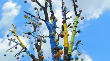 Tree decorated eggs,Easter tree — Wideo stockowe