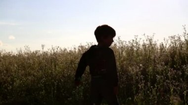 Children in nature.Boy and girl in the field. — Stock Video