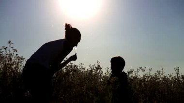 Mum plays with children in the field.Mother and son blowing dandelion.Mother holding a baby in her arms. — Stock Video