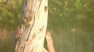 Beautiful girl in a park, hiding behind a tree trunk.Beautiful, playful girl on nature. — Stock Video