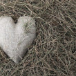 Heart on straw — Stock Photo