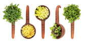Fresh flavoring herbs and spices in ceramic scoop — Stock Photo