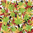 Marijuana background — Stock Vector