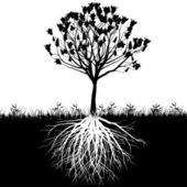 Tree roots silhouette — Stock Vector