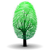 Fingerprint tree — Stock Vector
