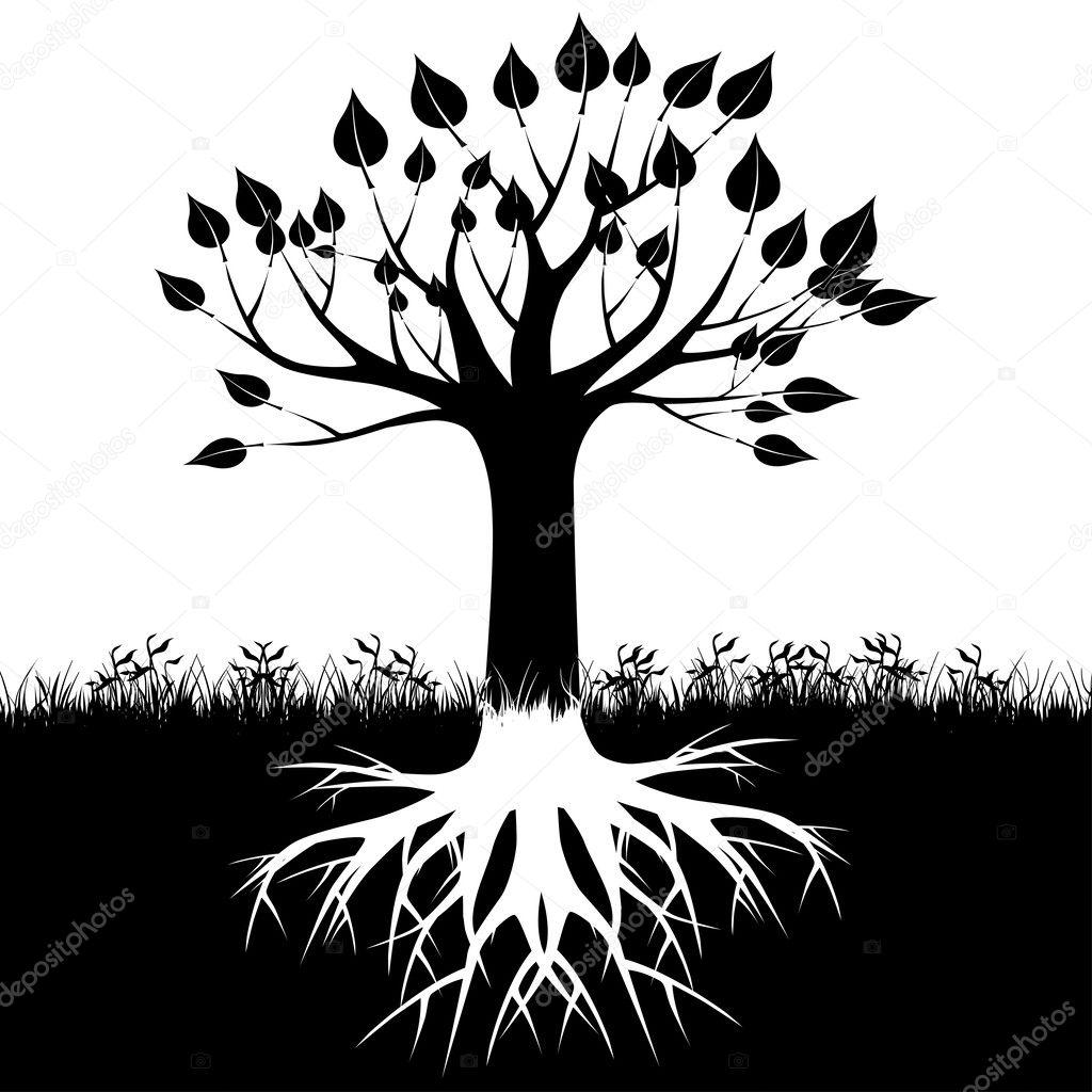 树的根剪影 — 图库矢量图像08 andrijamarkovic