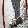 Stock Photo: Close up of velocipede wheel with fragment of cyclist's leg in beautiful oldfashioned wear