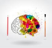 Creativity brain — Stock Vector