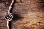Pine cone on old wooden background — ストック写真