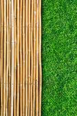 Grama em bambu — Fotografia Stock