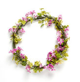 Quadro flor isolado no fundo branco — Foto Stock
