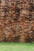 Brick wall with grass floor — Stock Photo