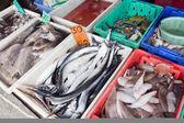 Variedad de pescados y mariscos pescado fresco en el mercado — Foto de Stock
