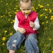 Stock Photo: Little girl sniffing dandelion.