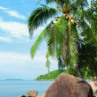 Wonderful view of thai island beach — Stock Photo