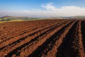 Farming Plowed Earth Planting — Stock Photo