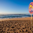 Stock Photo: Beach Lifeguard Warning Signs Waves