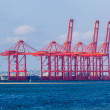 Large Cranes Containers Shipping — Stock Photo #36453225