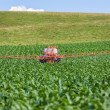 Farming Maize Crop Tractor Spraying — Stock Photo