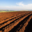 Plowed Earth Planting Crops — Stock Photo #37483011