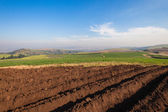 Plowed Earth Planting Crops — Stock Photo