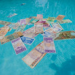 Stock Photo: Fiat Coins Money Drowning Extinct