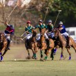 Horse Polo Game Action — Stock Photo #37966907