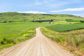 Dirt Road Countryside — Stock Photo