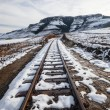 Stock Photo: Railway Tracks Snow Mountains