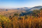 Wildlife Terrain Landscape — Stock Photo