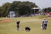 Golf Professional Louis Oosthuizen Swinging — Stock fotografie