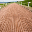 Stock Photo: Horse Racing Sand Training Track