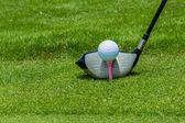 Golf kierowcy piłka pole tee — Zdjęcie stockowe
