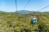 Cable Car Tropical Jungle Forest — Stock Photo