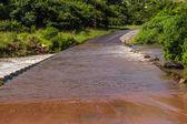 Flooding Low Concrete Bridge — Stock Photo