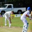 Foto Stock: Cricket 1st Teams High Schools